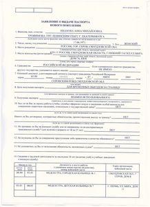 Заявление на гражданство рф по программе переселения.